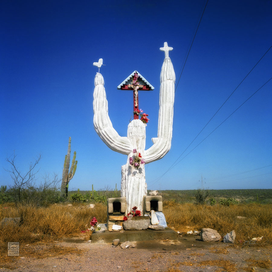 Baja_Cactus_Shrine_1992_08-E copy