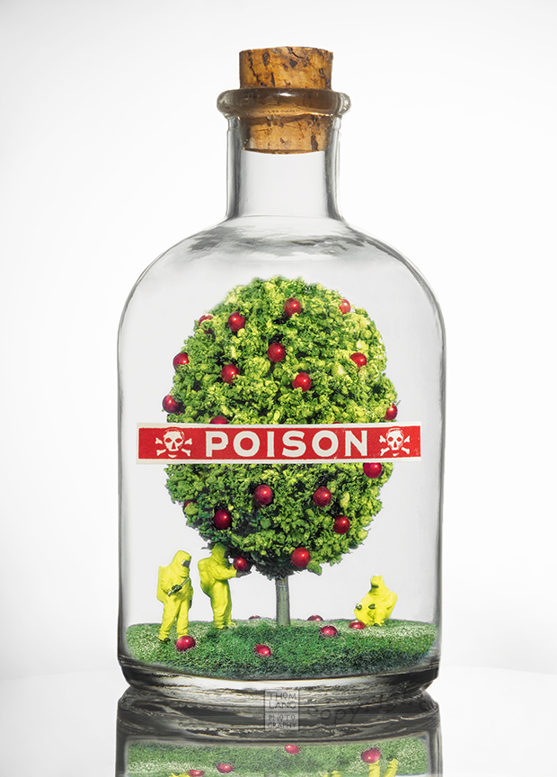 poison-apple-tree_blog