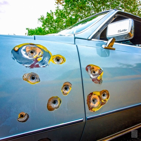 Bullet Holes Cadillac_BLOG-WM