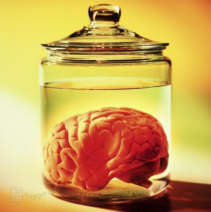 Brain in Jar-IG