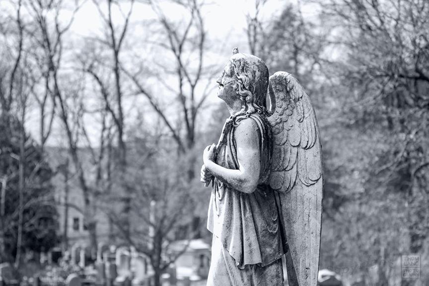 Sleepy Hollow Cemetery_2009_0392-BW-WM