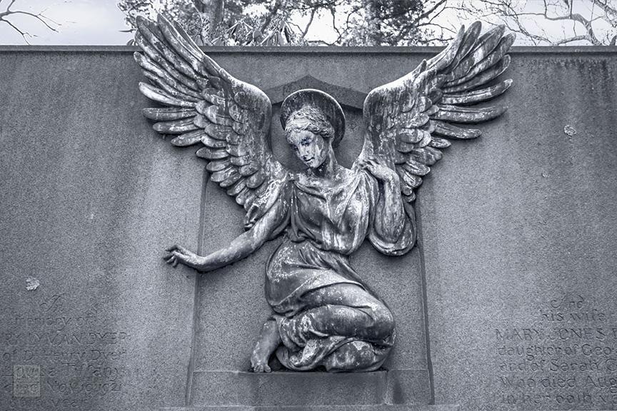 Sleepy Hollow Cemetery_2017_0456-BW-WM