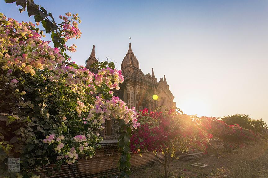 Myanmar_2017_Old_Bagan_Pagoda_0486_BLOG