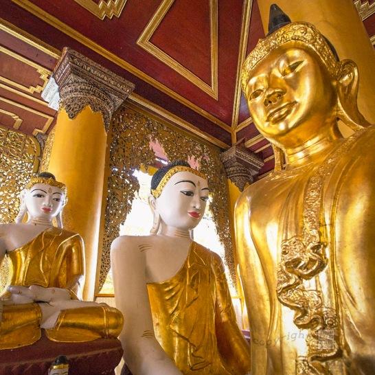 Myanmar_2017_Buddha_Shwedagon_Pagoda_Yangon_9232_BLOG