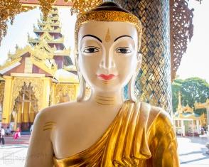 Myanmar_2017_Buddha_Shwedagon_Pagoda_Yangon_9248-BLOG
