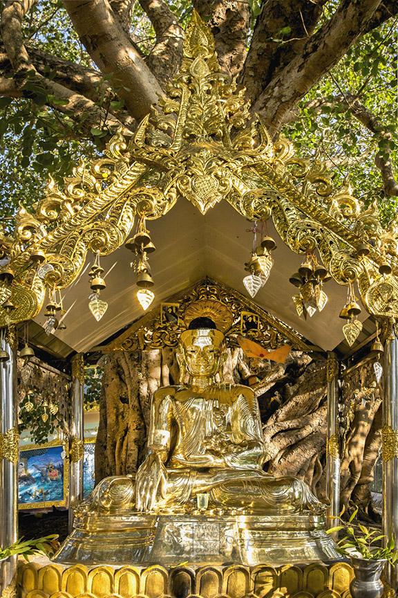 Myanmar_2017_Golden_Buddha_Shwedagon_Pagoda_Yangon_9008-BLOG