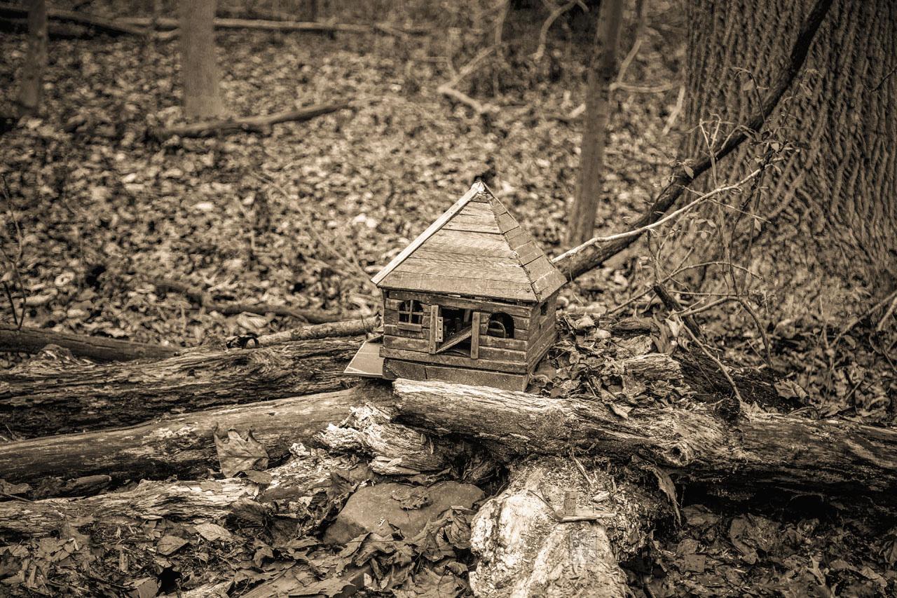 Fairy_House_5281-B