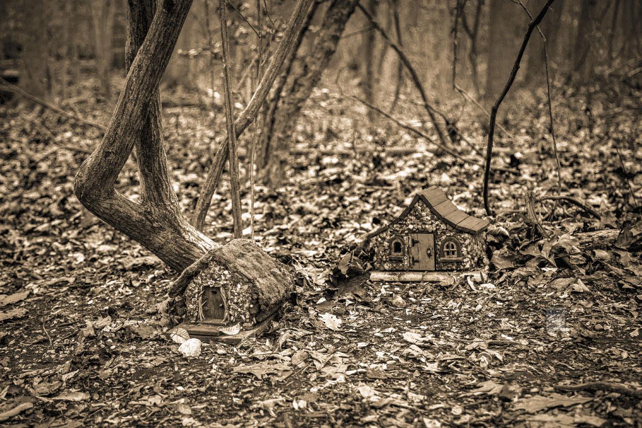 Fairy_House_5301-B