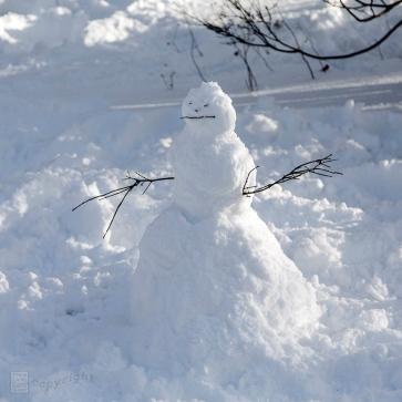Snow Day Central Park 2020_6570-BLOG