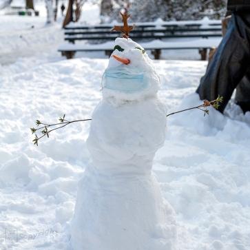 Snow Day Central Park 2020_6608-BLOG