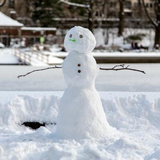 Snow Day Central Park 2020_6610-BLOG