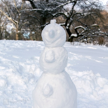 Snow Day Central Park 2020_6614-BLOG