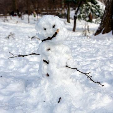 Snow Day Central Park 2020_6631-BLOG