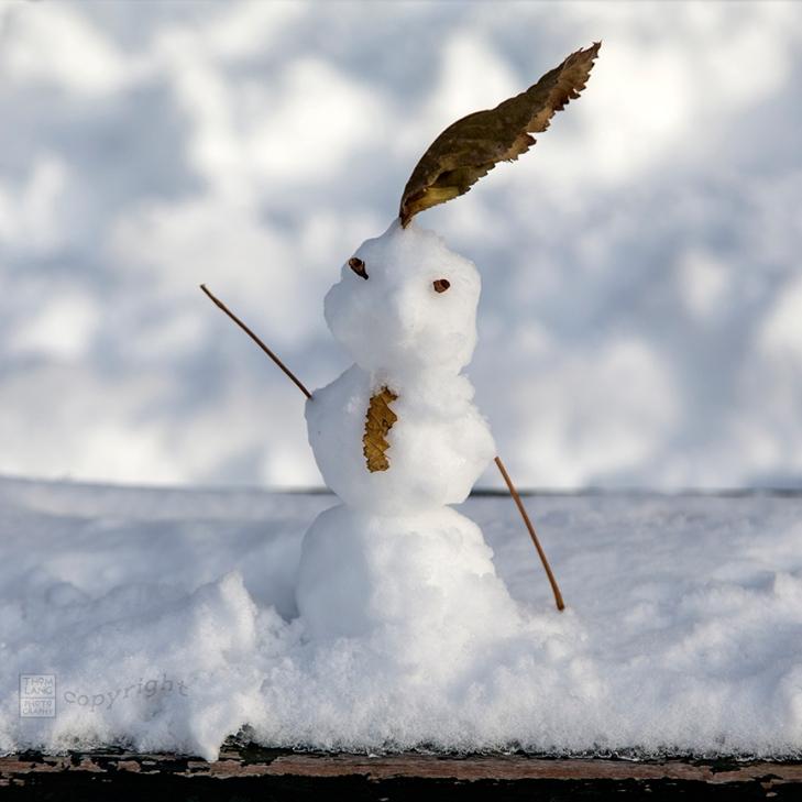Snow Day Central Park 2020_6632-BLOG