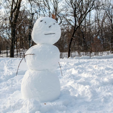 Snow Day Central Park 2020_6650-BLOG