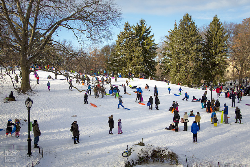 Snow Day Central Park 2020_6656-BLOG