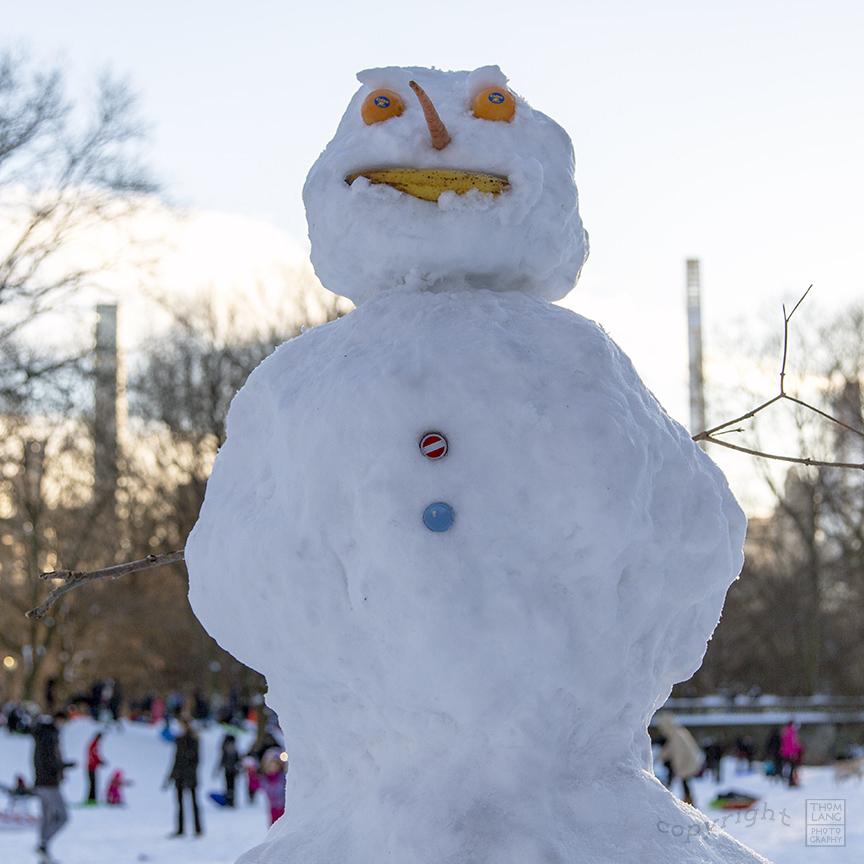 Snow Day Central Park 2020_6746-BLOG