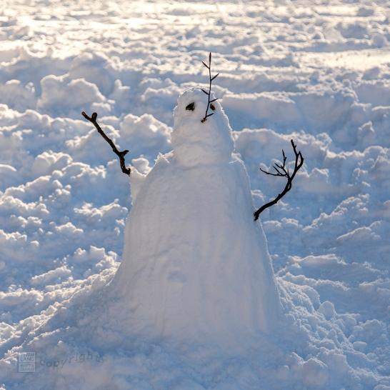 Snow Day Central Park 2020_6772-BLOG