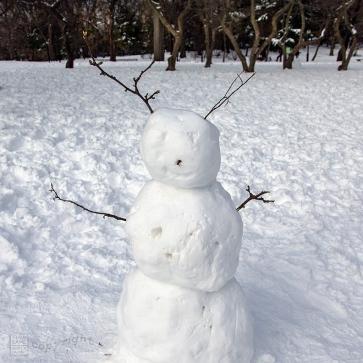 Snow Day Central Park 2020_6785-BLOG