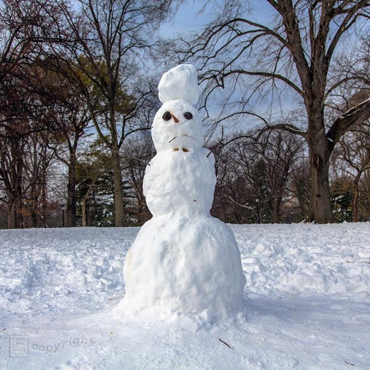 Snow Day Central Park 2020_6788-BLOG