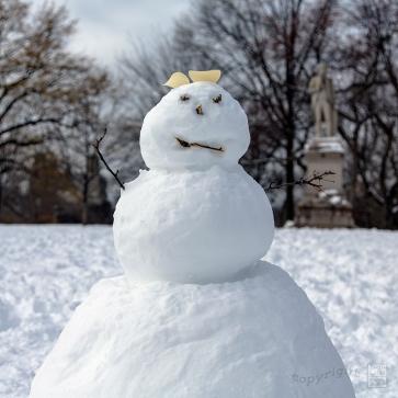 Snow Day Central Park 2020_6792-BLOG